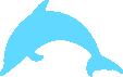 Strijkapplicatie Dolfijn