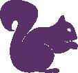 Strijkapplicatie Eekhoorntje