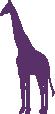 Strijkapplicatie Giraffe