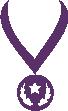 Strijkapplicatie Medaille Ster