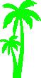 Strijkapplicatie Palmbomen
