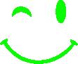 Strijkapplicatie Smiley Knipoog