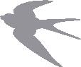 Strijkapplicatie Zwaluw