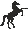 Strijkapplicatie Paard steigerend