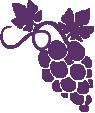 Strijkapplicatie Druiven